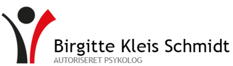 birgittekleisschmidt.dk